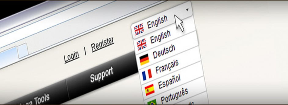 Website Localization Services….where do you start?