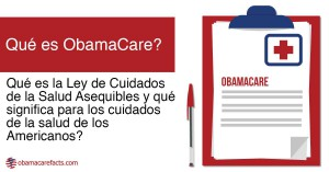 Image from ACA Spanish website showing translation of Affordable Care Act as an example of Spanish healthcare terminology
