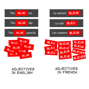 Image showing comparison between use of adjectives in English and French