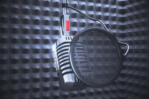 Translation for narration image of microphone and