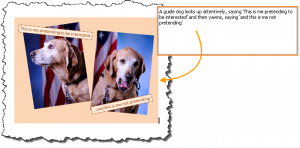 Two images of a guide dog accompanied by alternate text describing the guide dog's behavior